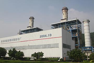 东莞深能源樟洋电力有限公司1