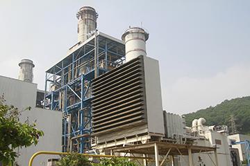 东莞深能源樟洋电力有限公司2