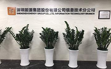 深圳能源集团股份有限公司信息技术分公司1